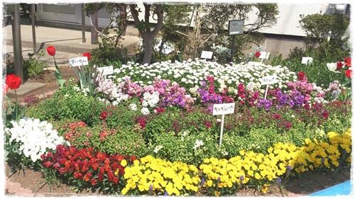 素敵な花壇