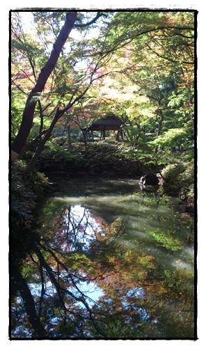 六義園 池