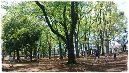 城北中央公園 ピクニック